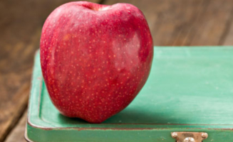 apple on lunchbox