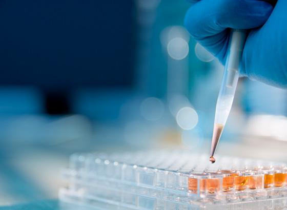 Biologics Peptides Standards | USP